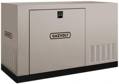 Газовый генератор Gazvolt Standard 40 KT Dnepr 21